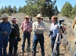Colorado Blm Christmas Tree Permits by August 2010 Straight From The Horse U0027s Heart