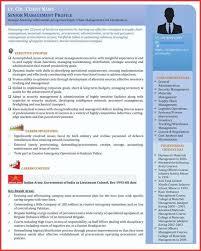 Senior Executive Resume Samples Free Inspirational Visual Templates Management Cv Template Uk Examples Writing Tips
