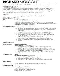 Resume Biography Sample Fashion Designer Bio Grey Template With Blue Details Student Writing A Professional Examples