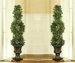 John Lewis Partners Brunswick Spruce Unlit Christmas Tree Set Of 3 Spiral Trees