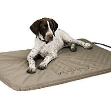 Tempur Pedic Dog Beds by The Best Dog Beds For Your Canine Pal American Kennel Club
