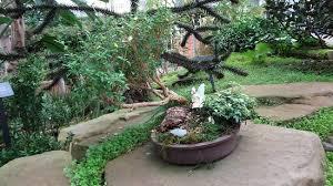 Matthaei Botanical Gardens Ann Arbor All You Need to Know