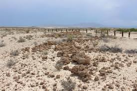Tule Springs Fossil Beds National Monument by Discover A Fossil Jackpot Off The Las Vegas Strip Science