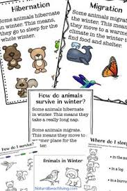 Youll Love These Winter Animals For Preschool Ideas