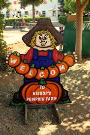 Pumpkin Patch Sacramento by Got Pumpkins Bishop U0027s Pumpkin Farm Is A Must See Calrice