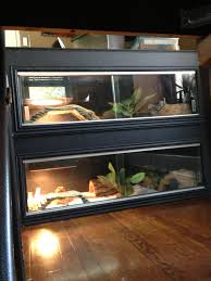 Bearded Dragon Heat Lamp Broke by Bearded Dragon Chris And Ash Discussions Of Exotic Species And