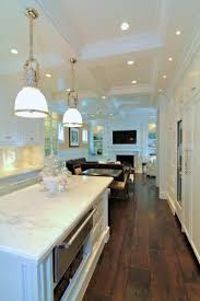wow this high contrast kitchen with the coffered ceiling