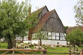 Villa Farmhouse With Animals Rental Pool Scansano Maremma Tuscany In Denmark Hd Windows Wallpapers