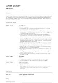 Sales Advisor - Resume Samples & Templates | VisualCV Resume Examples Writing Tips For 2019 Lucidpress Project Management Summary Template Lkedin Example Caregiver Sample Monstercom Cv Templates Rso Rumes Product Manager Formal Design Executive Samples Professional Writer Ny Entrylevel And Complete Guide 20 30 View By Industry Job Title Unforgettable Administrative Assistant To Stand Out Your Application Elementary Teacher Genius 100 Free At Rustime