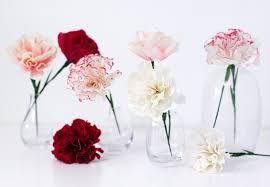 Handmade DIY Tutorials Paper Carnation Flower
