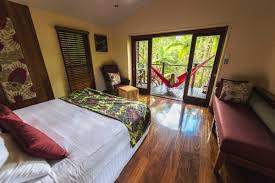 100 Tree House Studio Wood Silky Oaks Lodge Daintree House