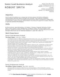 Systems Analyst Resume Sample Senior Business Example Fresh Financial