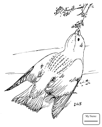 Birds Lark Bunting And Columbine Colorado State Bird Flower Coloring Pages For Kids