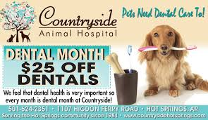 countryside animal hospital pet care discounts coupons countryside animal hospital