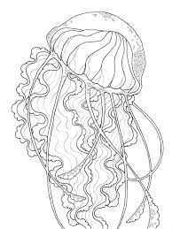 Free Printable Jellyfish Coloring Pages Sheet Pictures Cute Cartoon Little Baby Mermaid
