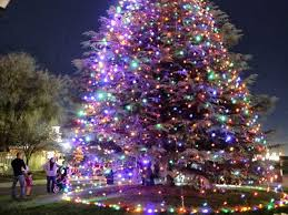 Christmas Tree Lane Ceres Ca Address by Manteca Bulletin