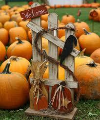 Kent Ohio Pumpkin Patches by Kingsway Pumpkin Farm Hayrides Corn Maze Petting Zoo Straw Tunnel
