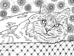 Cats Meow Adult Coloring Book 30 Stress Relieving Fabulous Feline Designs