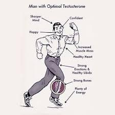 White Pumpkin Seeds Testosterone by 5 Ways To