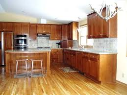 Bamboo Hardwood Flooring Pros And Cons by Bamboo Flooring Pros Cons Full Size Of Inspiring Modern Floor