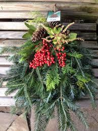 Frasier Christmas Tree by Christmas Tree Time In Nashville Jvi Secret Gardens