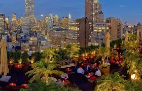 New York City Palm Trees Find Winter Refuge At Plant City Farm ... Rooftop Lounge In Nyc Home Porn Pinterest Top 10 Bars Elegrans Real Estate Blog Magic Hour Bar Lounge New York City View Luxury Park Avenue Hotel Gansevoort 18 Ink48 With Mhattan Skyline Behind Bars The Best Rooftop Die Besten Rooftopbars Von Echte Insidertipps 6 To Visit This Summer Refinery In Good Company Best Outdoor Drking Patio Travel Leisure