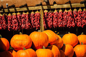 Pumpkin Patch San Jose 2015 by New Mexico Pumpkin Patch Msummerfieldimages