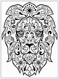 Detailed Lion Head Colouring In Page