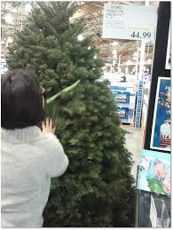 Montebello Area Christmas Trees Prices 2011