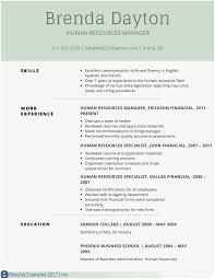 Great Resume Examples 2017 Elegant Resume Writing Tips 2019 ...