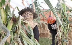 Dorney Park Halloween Commercial by Halloween Haunts Come To The Region Nj Com