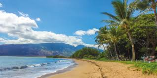 100 The Beach House Maui How To Spend The Perfect Honeymoon In Hawaii