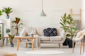 holztisch vor beige sofa in floral wohnzimmer interieur mit pflanzen echtes foto stockfoto und mehr bilder beige