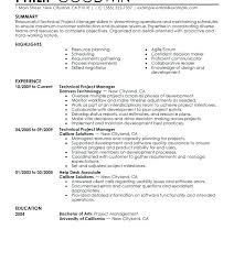 Resume Objective For Project Manager Easy Sample Technical Writing Examples Me Format Information Technology Objectives