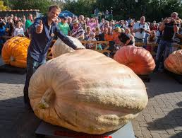 Atlantic Giant Pumpkin Record by Heaviest Pumpkin In The World Art U0026technology