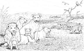 Click To See Printable Version Of Lion Pride And Hyenas Coloring Page