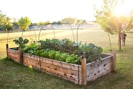 Raised Bed Garden Plans Lowes