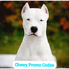 Chewy Coupons| Chewy Discount Codes| : FREE PROMO CODE COUPONS Chewy Coupon Code Coupon Loving Beauty Life Chewycom Find 50 Off First Purchase Of Onguard Cat And Dog Flea Tick Treatment 28 Shein Coupon Codes 30 Free Shipping September 2019 Chewycom 15 Your Order 49 Or More Guide To Optimizing Promo Codes In Your Email Marketing Allivet 2018 Coupons For Baby Wipes Fashion Nova Percent Off Code Incipio Facebook Lelli Kelly Uk Gayweddingscom Mentos Mint Fruit Rolls As Low 033 Each At Popsugar Must Have Chewy Off Imagenes8info