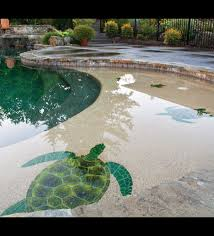 swimming pool tile and coping portland oregon swimming pool coping