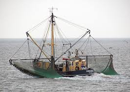 Wicked Tuna Boat Sinks by Commercial Fishing Wikipedia
