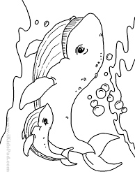 Download Coloring Pages Sea Animal Free Printable Animals Book For Kids