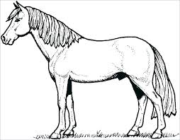 Coloring Pages Horse Head Page Realistic To Print Free