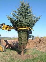 A Tree Baler In Action
