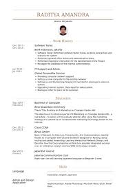 Example Software Tester Resume