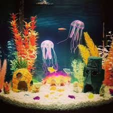 Spongebob Aquarium Decor Amazon by 11 Best Fish Tank Images On Pinterest Fish Tanks Aquarium Ideas