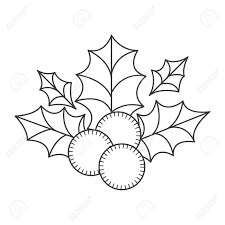 Holly Berry Christmas Decoration Sketch And Draw Design Vector Illustration Stock
