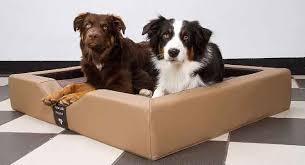 gel hunde schlafplatz hochwertiger hunde schlafplatz