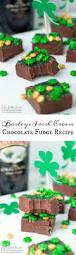 Pumpkin Spice Baileys Recipe by Best 25 Baileys Original Ideas On Pinterest Holiday Cocktails