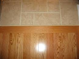 Carpet To Tile Transition Strip On Concrete by Clear Lines Wood Floor To Cream Colored Tiles Transitionfloor