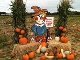 Corn Maze Pumpkin Patch Winston Salem Nc the best pumpkin patches for picking your own jack o u0027 lantern